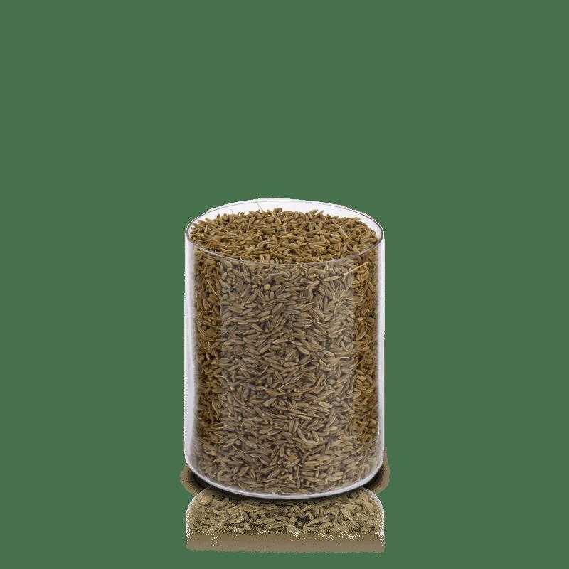 Anice semi